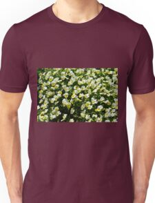 Many small beautiful yellow white flowers in the park. Unisex T-Shirt