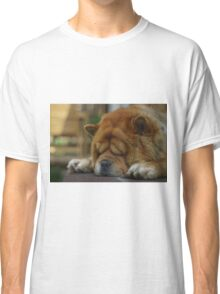 Dog's leisure time Classic T-Shirt