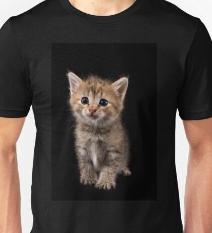 Charming fluffy ginger kitten on a black background Unisex T-Shirt
