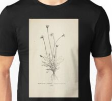 Southern wild flowers and trees together with shrubs vines Alice Lounsberry 1901 161 Cynthia Unisex T-Shirt