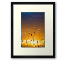 beautiful sunset over the ballybunion coast Framed Print