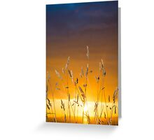beautiful sunset over the ballybunion coast Greeting Card