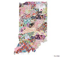 Indiana map Photographic Print