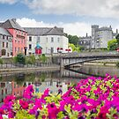 flower lined riverside view of kilkenny by morrbyte