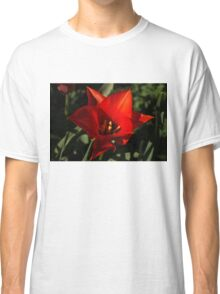 Brilliant Spring Sunshine in Red Classic T-Shirt