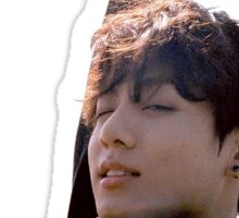 BTS Jungkook: Young Forever Sticker