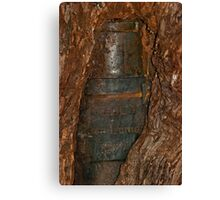 0406 Ned Kelly Armour buried in old tree trunk Canvas Print