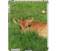 Calf in a Field of Grass iPad Case/Skin