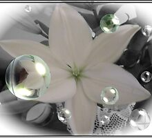 White Lily Bubbles - Selective Colouring by judygal