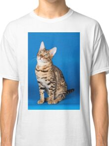 Charming cute red fluffy kitten Abyssinian cat Classic T-Shirt