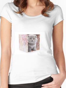 Charming fluffy kitten British cat Women's Fitted Scoop T-Shirt