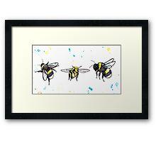 Everyone loves bumblebees! Framed Print