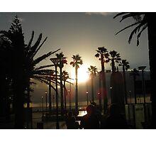 Sunset Through The Palms Photographic Print