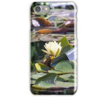Longwood Gardens - Spring Series 16 iPhone Case/Skin