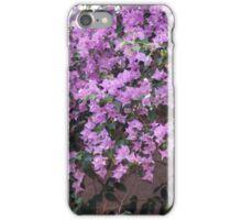 Longwood Gardens - Spring Series 15 iPhone Case/Skin