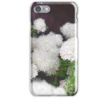 Longwood Gardens - Spring Series 6 iPhone Case/Skin