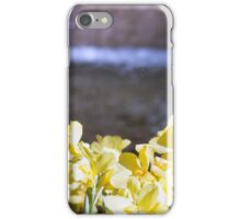 Longwood Gardens - Spring Series 5 iPhone Case/Skin