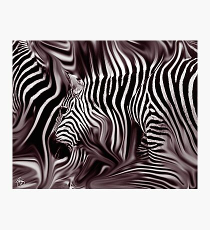 Knee Deep in Brown Zebras  Photographic Print
