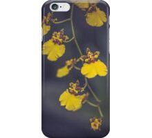 Like Sunshine iPhone Case/Skin