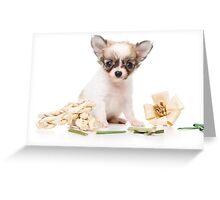 Cute fluffy white dog puppy chihuahua Greeting Card