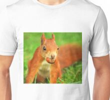 Red Squirrel with a nut Unisex T-Shirt