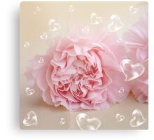 Heart bubbles on a blossom Canvas Print