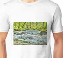 The Golitha Falls HDR Unisex T-Shirt