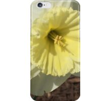 Spring Doubles - Flowers Daffodil's  iPhone Case/Skin