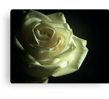 Simplistic Rose  Canvas Print