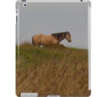 Along the hilltop iPad Case/Skin