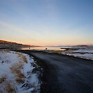 Iceland V by Debbie Ashe
