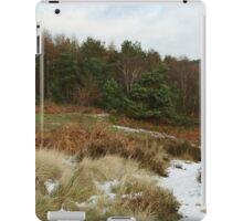 Snowy Hednesford Hills iPad Case/Skin