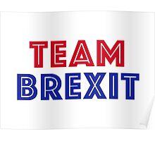 EU vote - Team Brexit Poster