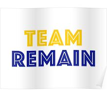 EU Vote - Team Remain Poster