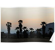 Palms At Dusk Poster