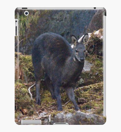 Musk Deer Everest Region Nepal iPad Case/Skin