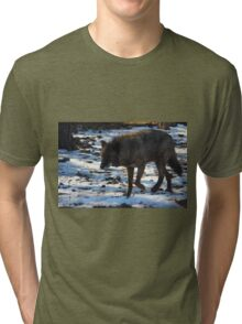 """""""Timber Wolf on the Prowl"""" Tri-blend T-Shirt"""