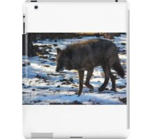 """Timber Wolf on the Prowl"" iPad Case/Skin"