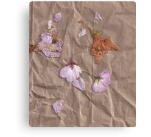 Dried Flowers - 1 Canvas Print
