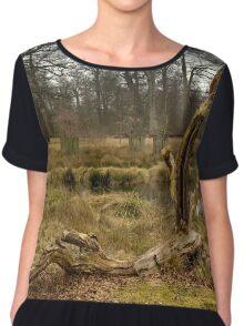 Dunham Massey - A dead tree Women's Chiffon Top