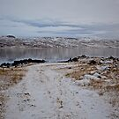 Iceland IX by Debbie Ashe