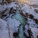 Iceland XI by Debbie Ashe