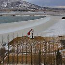 Iceland XIV by Debbie Ashe