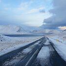 Iceland XVI by Debbie Ashe