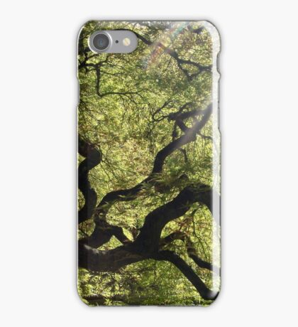 Labyrinth iPhone Case/Skin