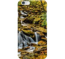 Smoky Mountain Stream  iPhone Case/Skin