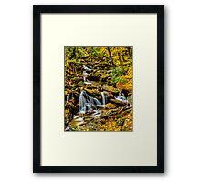 Smoky Mountain Stream  Framed Print