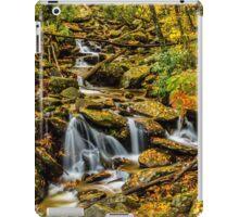 Smoky Mountain Stream  iPad Case/Skin