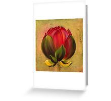 The Lotus Bulb Greeting Card