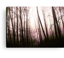 Enchanting forest... Canvas Print